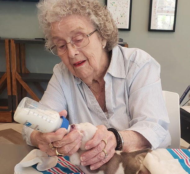 The Grande at Sterling Estates Residents Help Feed Newborn Puppies